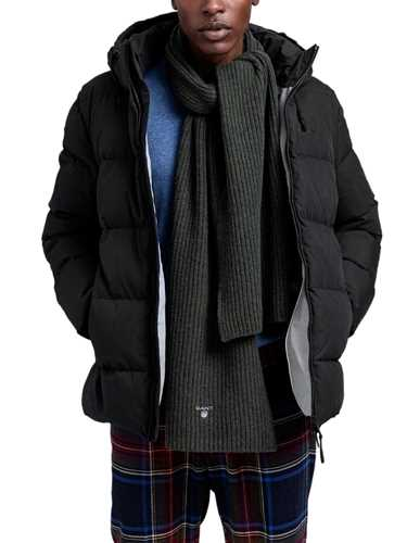 Picture of Gant | Giubbotti D2. The Alta Down Jacket