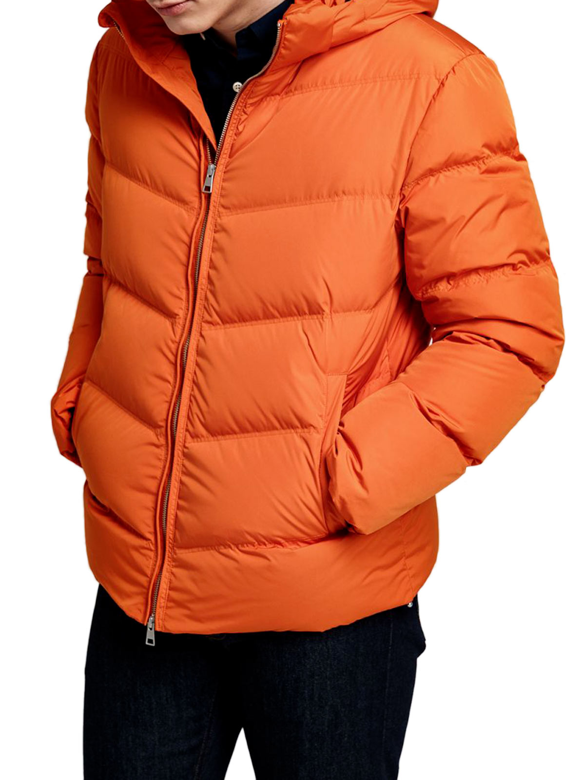 Picture of GANT | Giubbotti D1. THE ALTA DOWN JACKET